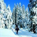 Bild 19: Ferienidylle Eder 5 Sterne DTV / Bayerischer Wald