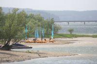 Bild 10: Ferienwohnung mit Terrasse am Möhnesee, Garten, Liegewiese und Grillkamin