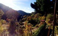 Bild 22: 70m² Ferienhaus mit Panoramablick gegenüber Skihang, Mountaintrailparkour