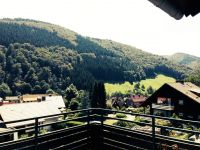 Bild 7: Haus Panoramablick im Oberharz mit 50.000er Internet