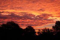 Der wunderschöne Anblick ist leider nur für Frühaufsteher! - Bild 4: Ferienzimmer auf dem Bauernhof