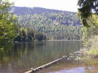 Bild 49: Ferienhaus Degenhardt im Bayerischen Wald - Im Urlaub und doch zu Hause