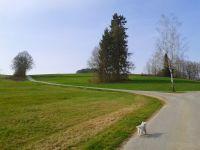 Bild 31: Ferienhaus Degenhardt im Bayerischen Wald - Im Urlaub und doch zu Hause