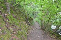 Dieser Wanderweg ist direkt vom Grundstück aus zu erreichen und führt Sie direkt in die herrliche Landschaft mit Wald und Wiesen. - Bild 16: Ferienhaus Eifelröschen - wenn Sie das Besondere lieben
