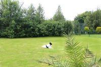 Der große Garten ist vollständig eingezäunt und befindet sich direkt am Deich. Er lädt zum spielen, Sonnenbad oder Grillabend ein. - Bild 7: Strandnahes und komfortables Ferienhaus Nordsee-Robee