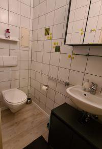 Mit WC und Waschbecken. - Bild 25: Ferienhaus Waldhäuschen Zandt- Bayerischer Wald