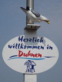 Bild 19: FeWo Möwenkoje Strandlage Cuxhaven Duhnen Hunde & Kinder willkommen