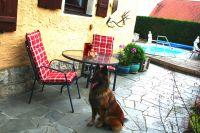 Bild 1: Ferienhaus Gabriela mit eingezäunten Garten und privatem Swimmingpool