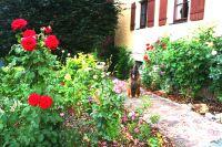Bild 22: Ferienhaus Gabriela mit eingezäunten Garten und privatem Swimmingpool