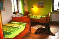 Bild 13: Ferienhaus Gabriela mit eingezäunten Garten und privatem Swimmingpool