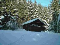 im Winter..... - Bild 7: Ferienhaus Arthur