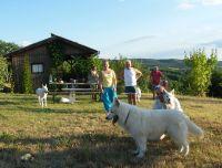 Bild 13: Wohlfühlurlaub mit Hund im familienfreundlichen Ferienhaus - Thermalbadnähe